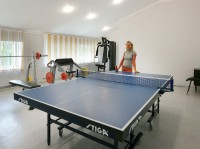 health resort Orlovskogo - Table tennis (Ping-pong)