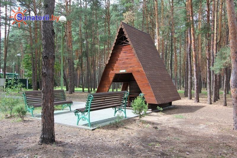 Санатории Белоруссии Беларуси - санаторий Солнечный - Площадка для шашлыков