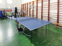 health-improving complex Raketa - Table tennis (Ping-pong)