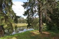 санатория Вяжути - Территория и природа