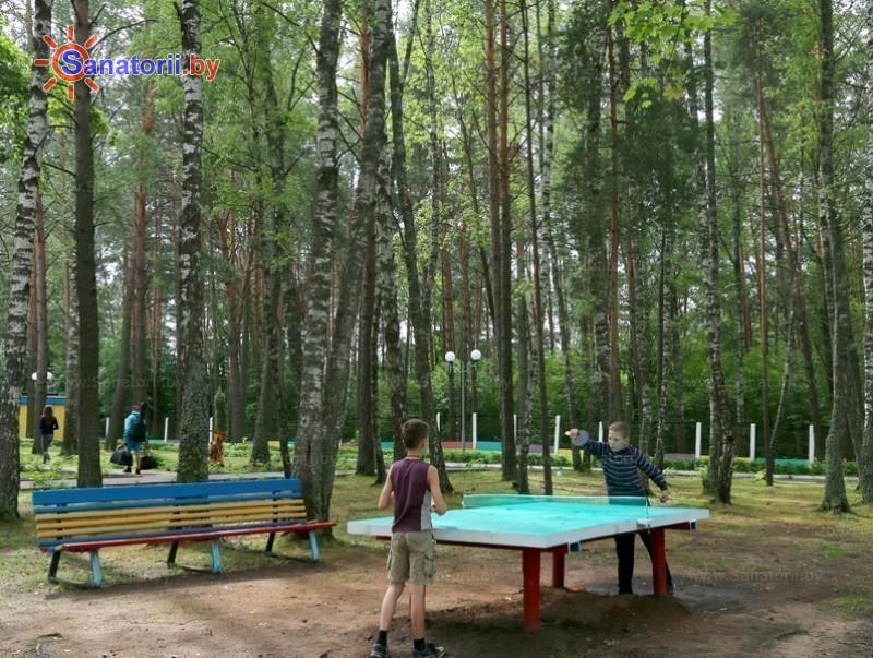 Санатории Белоруссии Беларуси - детский санаторий Богатырь - Теннис настольный