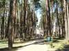Колос - Территория и природа