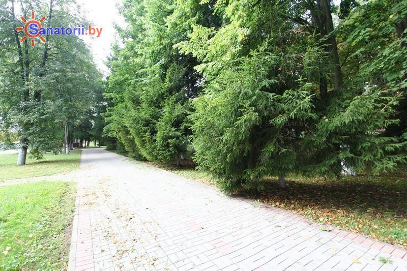 Санатории Белоруссии Беларуси - ДРОЦ Ждановичи - Территория и природа