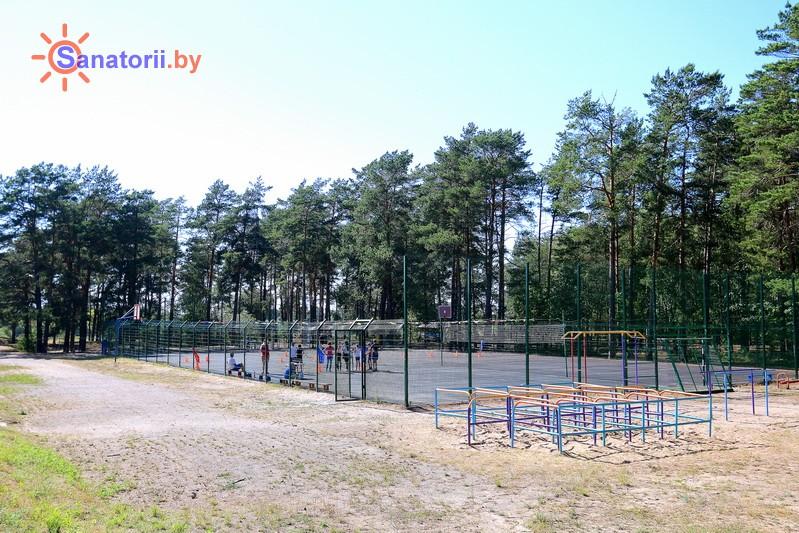 Санатории Белоруссии Беларуси - ДРОЦ Пралеска - Спортплощадка
