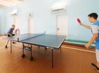 health resort for children Solnyshko - Table tennis (Ping-pong)