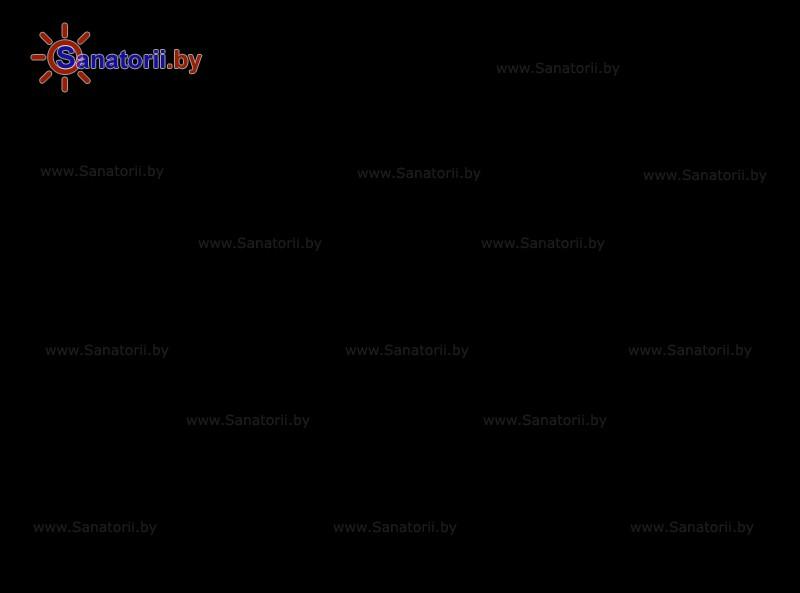 Санаторыі Беларусі - дзіцячы санаторый Налібоцкая пушча - Тэрыторыя