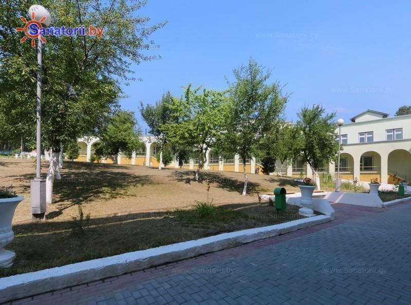 Санатории Белоруссии Беларуси - ДРОЦ Сидельники - Территория и природа