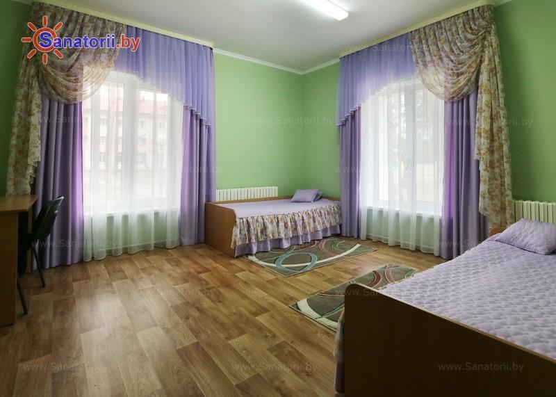 Санатории Белоруссии Беларуси - ДРОЦ Птичь - двухместный однокомнатный (гостевой домик)