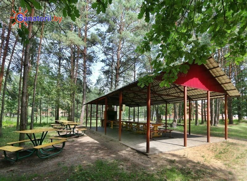 Санатории Белоруссии Беларуси - ДРОЦ Свитанак - Площадка для шашлыков