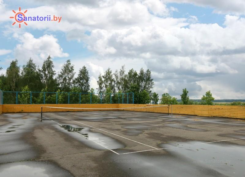 Санатории Белоруссии Беларуси - ДРОЦ Надежда - Теннисный корт