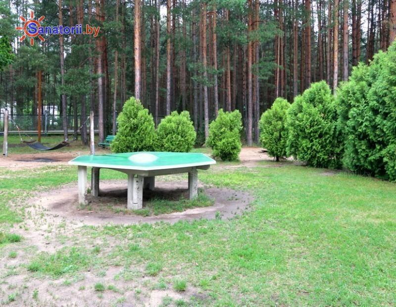 Санатории Белоруссии Беларуси - ДРОЦ Надежда - Теннис настольный