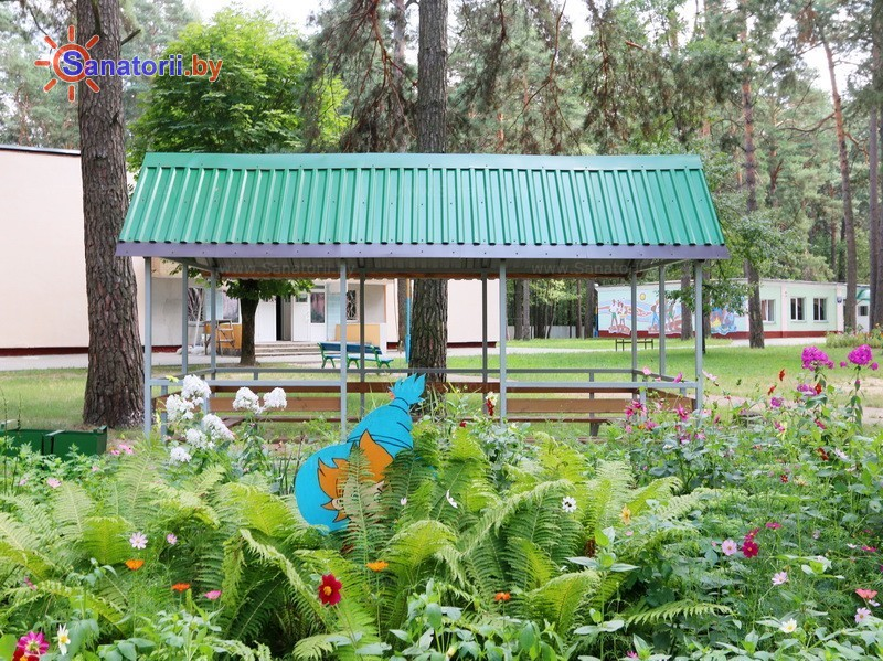Санатории Белоруссии Беларуси - ДРОЦ Романтика Люкс - Территория и природа