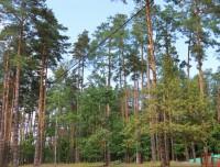 Качье - Территория и природа