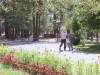 детского санатория Боровичок - Территория и природа