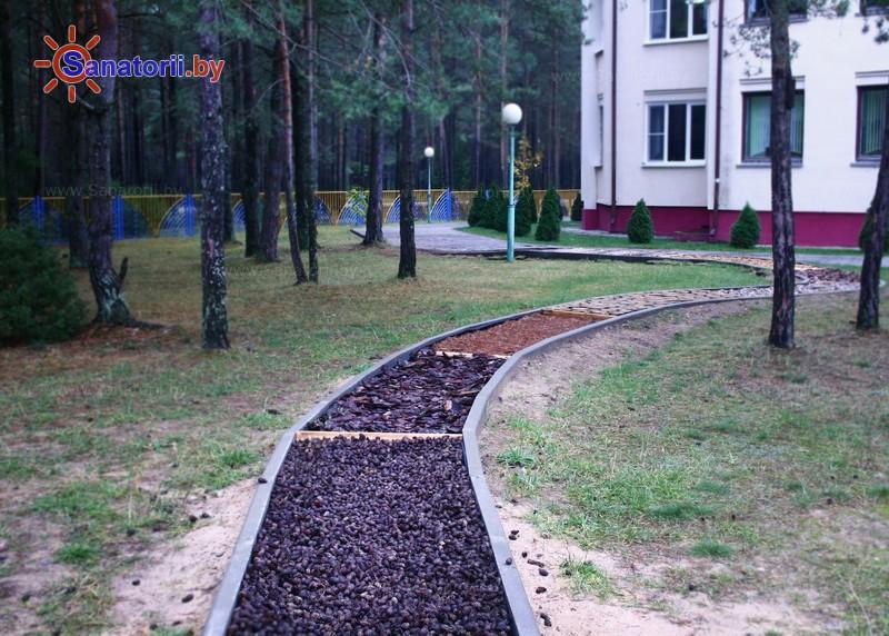 Санатории Белоруссии Беларуси - детский санаторий Боровичок - Тропа здоровья