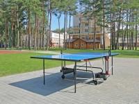 health resort Plissa - Table tennis (Ping-pong)