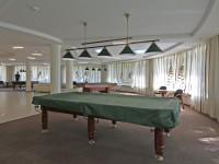 health resort Plissa - Billiards