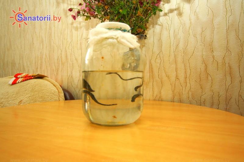 Санатории Белоруссии Беларуси -  Центр медицинской реабилитации и бальнеолечения - Гирудотерапия (пиявки)