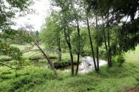 оздоровительного комплекса Ислочь-Парк - Водоём