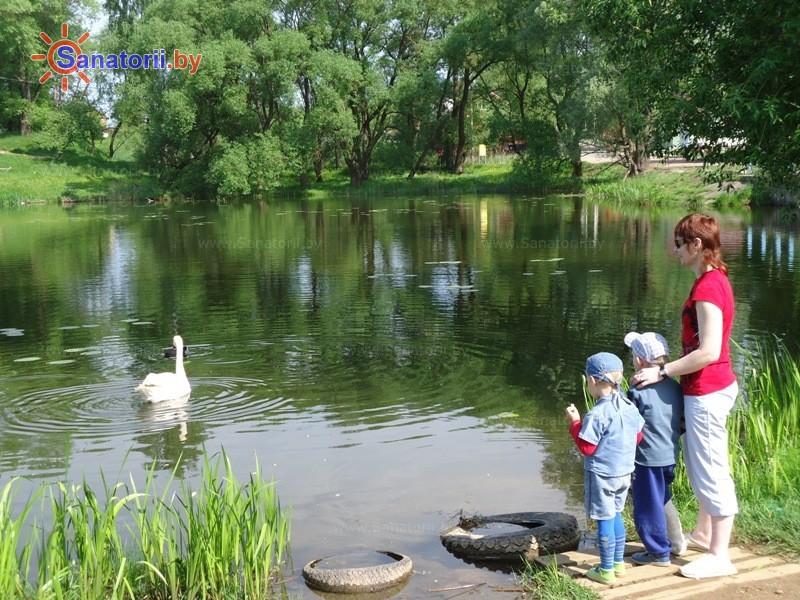 Санатории Белоруссии Беларуси - РДБМР Острошицкий городок - Водоём