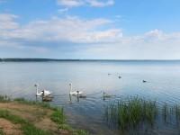 санатория Нарочанка - Водоём