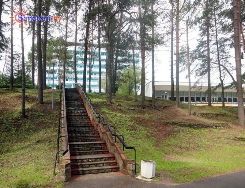 Санаторыі Беларусі - санаторый Нарачанка - Тэрыторыя