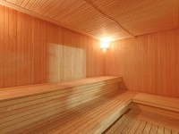health resort Vasilek - Sauna Finnish